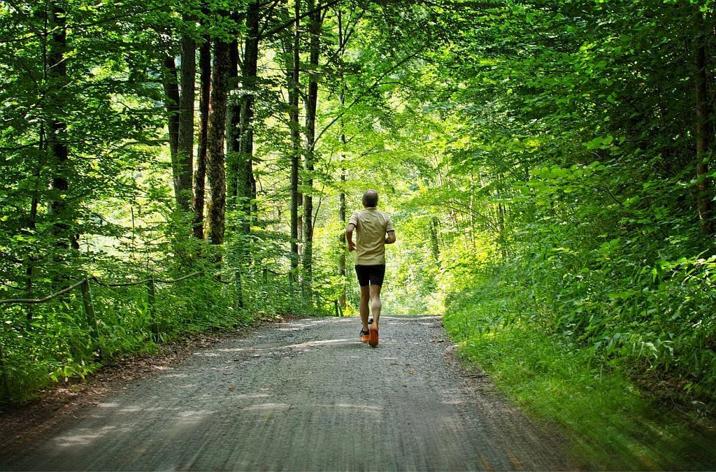 Laufen am Wolfgangsee: ein Läufer auf einem Schotterweg im Wald, von hniten betrachtet.