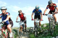 Radfahren am Wolfgangsee: vier Radfahrer auf einer begrünten Hüglekuppe im Sommer