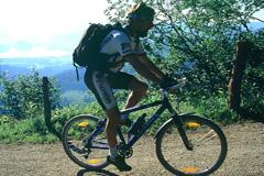 Radfahren am Wolfgangsee: ein Mountainbiker auf einer Schotterstraße, im Hintergrund alpines Panorama